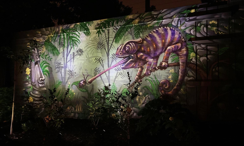 CHAMELEON, street artist, street art, graffiti, graffiti artist, street artists for hire, urban enhancement, large mural, feature wall