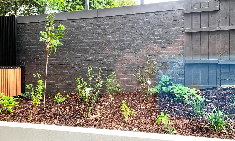 GardenFeatureWall2, CHAMELEON, street artist, street art, graffiti, graffiti artist, street artists for hire, urban enhancement, large mural, feature wall